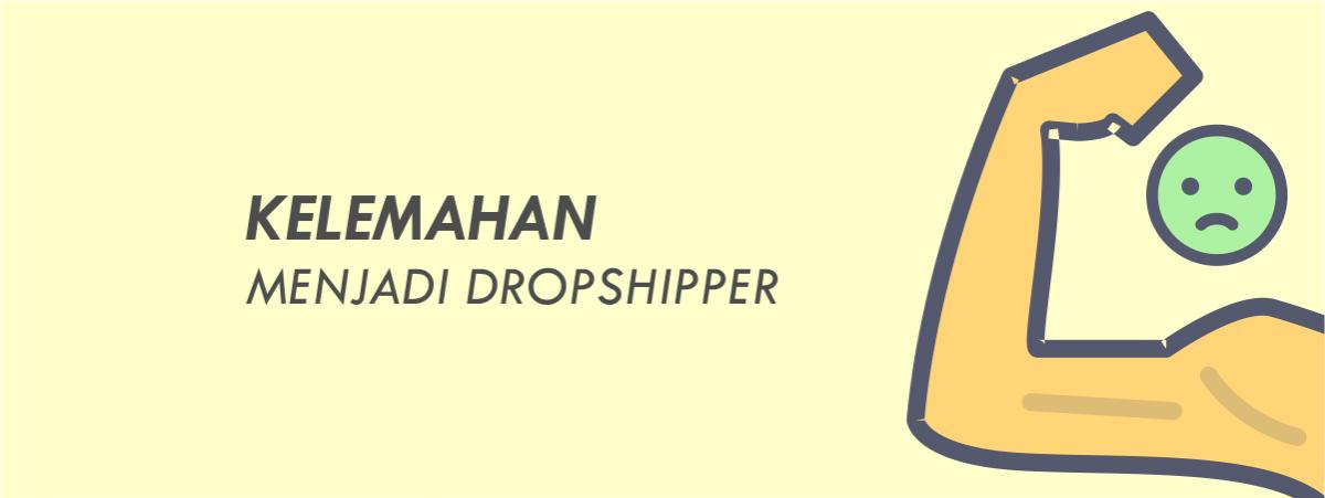 kelemahan dropship