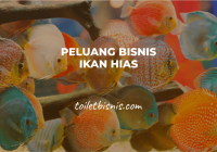 Peluang Bisnis Ikan Hias